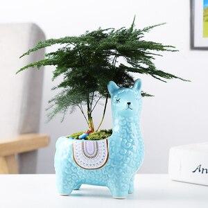 Image 5 - Cartoon Cute Alpaca Succulent Flower Pot Desktop Placed Potted Container Decoration Gift Balcony Plant Ceramic Creative