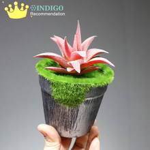 INDIGO - Artificial Succulent Plant With Vase Plastic Flower Bonsai Green Table Decoration Greenery Free Shipping