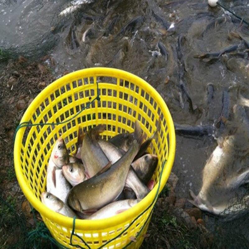 rede rede rede rede rede pesca ao ar livre peixe náilon net
