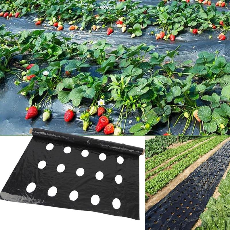 5Holes 95cm*50m 0.02mm Black Garden Vegetable Membrane Agricultural Plants Mulching Seeding Plastic Perforated PE Film