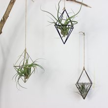Jardinières suspendues autoportantes balançoire géométrique en fer forgé Tillandsia support de plantes d'air support en métal de forme triangulaire(China)