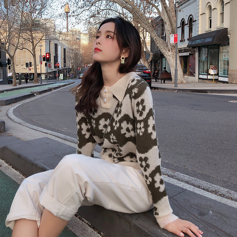 Mishow 2019 Women Autumn Winter Vintage Flare Printed Sweater Fashion Long Sleeve Turn-down Collar Knitted Sweater MX19C5431