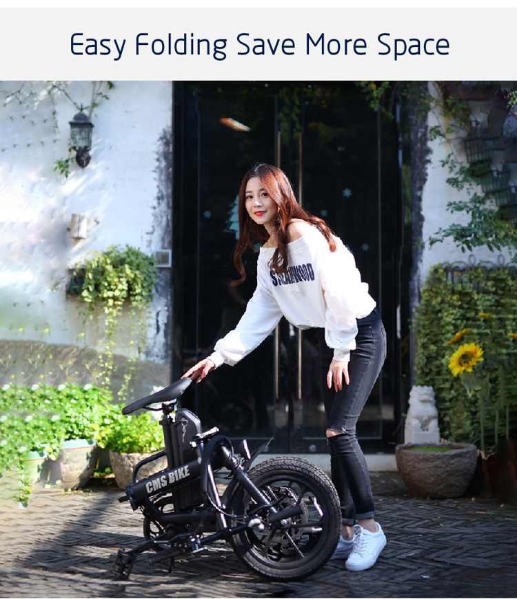 CE approved folding ebike 16 inch pedal assisted electric fold bike with 36V 13AH lithium battery 3