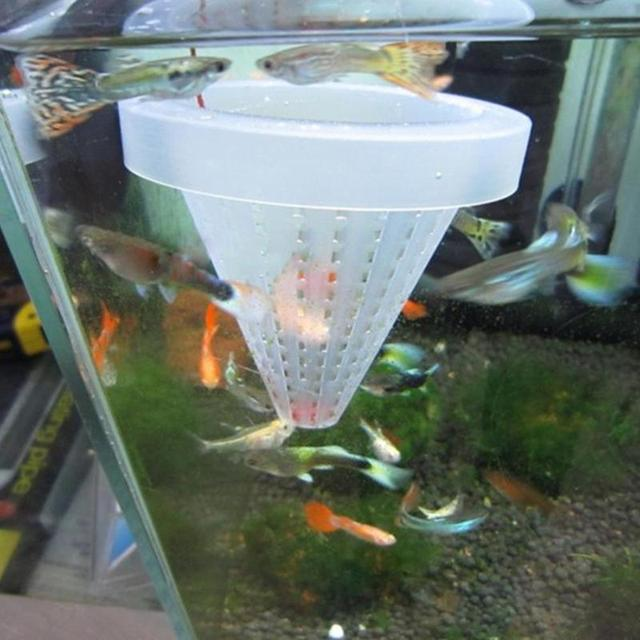 1pc Red Worm Feeder Funnel Cup  4