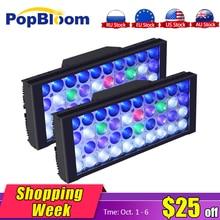 DSunY 2PCS 24 Programmable Hard SPS LPS Soft Coral Reef Aquarium Light For Salt Water Tank, 48 LED Lamp
