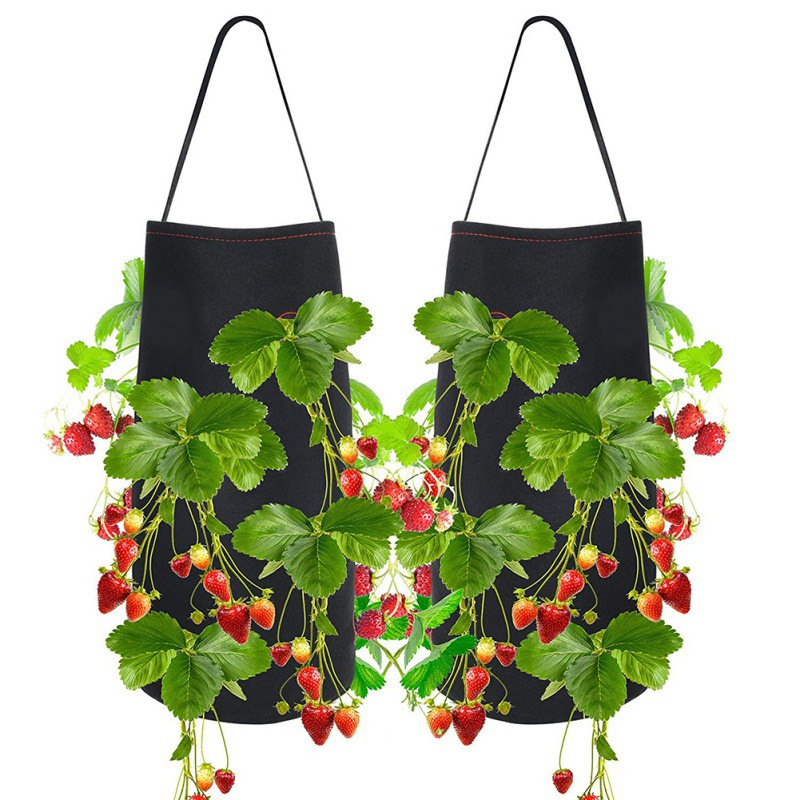 Flower Seedlings Sowing Plant For Strawberry Tomato Chili Pepper Growing Home Garden Felt Plant Grow Bag Nursery Hanging Pots
