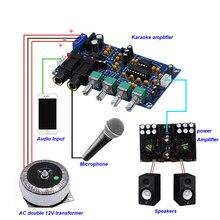 Pt2399 two-way microfone karaoke máquina pré-amplificador duplo ne5532 eco ktv reverbration karaoke placa amplificador