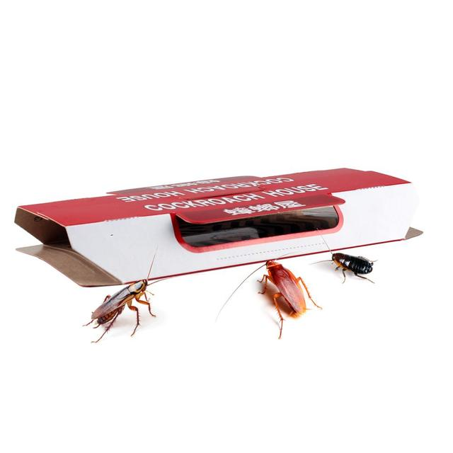 10 Pcs killing Cockroaches Glue Trap Bait Included kill Roach Killer Anti Cockroach Trap Centipedes Crickets cockroach sticker