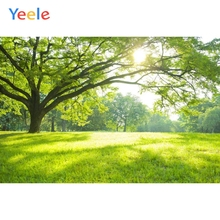 Spring Forest Tree Grassland Green Nature Backdrop Baby Vinyl Photography Background For Photo Studio Photophone Photozone Prop