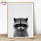 Raccoon Print Nurser...