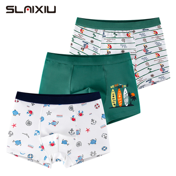 3 Pcs/lot Boys Underwear Clothes Cartoon Pattern For 2-10Years Old Kids Boxer Briefs Soft Teenager Shorts Panties Shorts