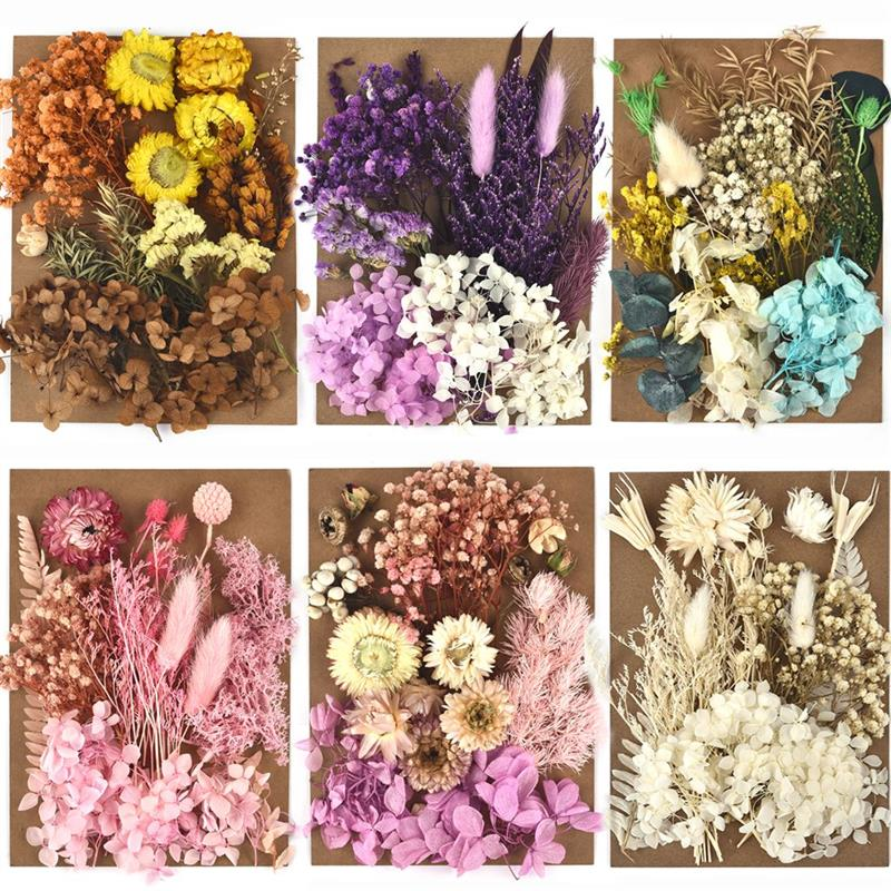 DIY Dried Flower for Resin Mold Making Real Flower for Resin Fillings Nail Art Home Craft Resin Casting Mold Making Tools