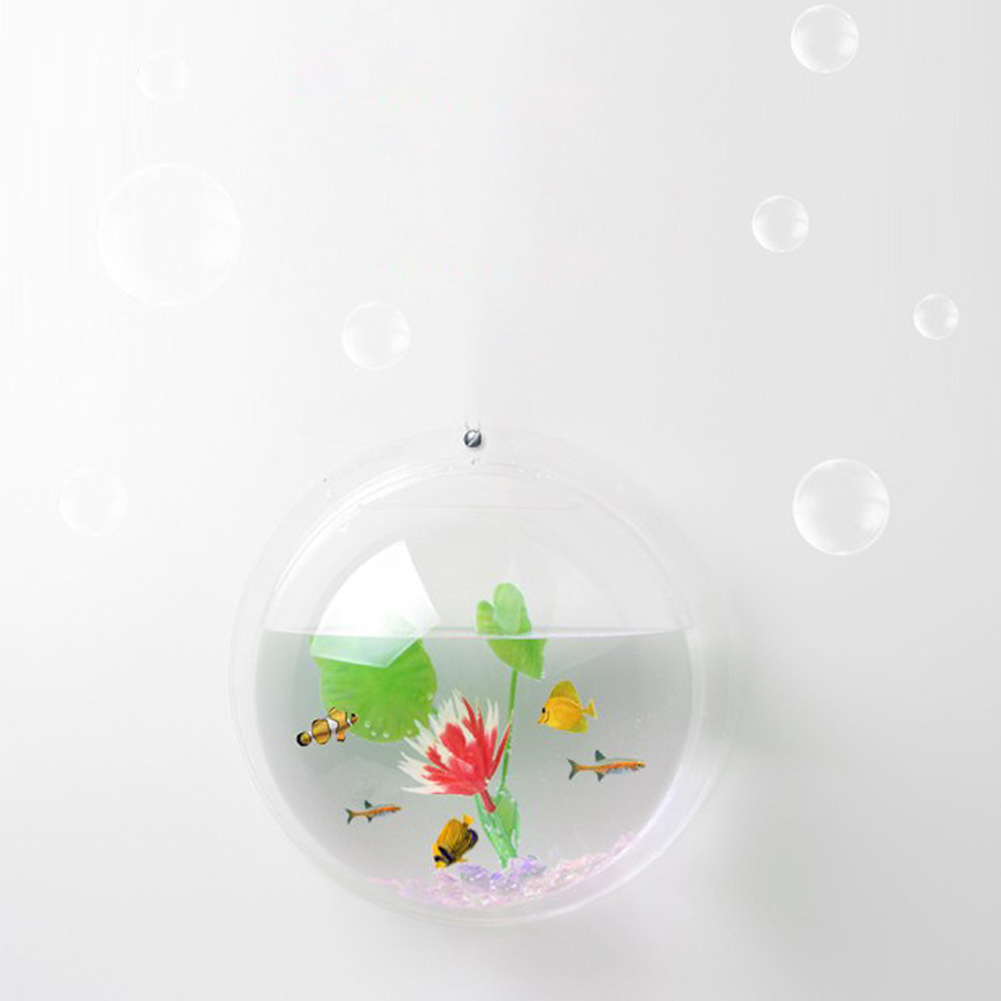 Wall Mounted Bubble Flower Bowl or Fish Tank 8