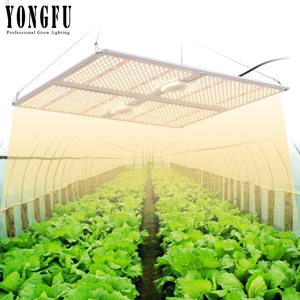Samsung LM301B Led Grow Light Quantum Board Indoor Grow Full Spectrum 3000K/5000K Meanwell Driver IP65 Waterproof  Growing Light