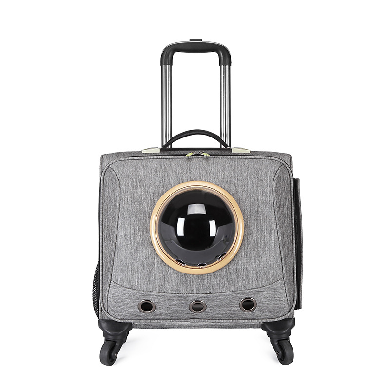 CARRYLOVE Stylish and breathable small pet travel Oxford  Rolling Luggage Spinner brand Travel Suitcase