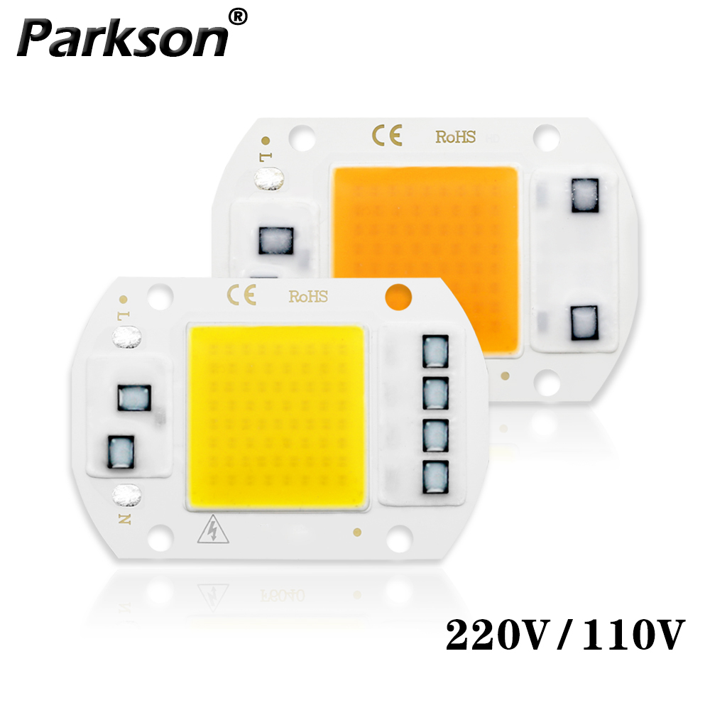 LED Lamp COB Chip AC 220 110V 50W 30W 20W 10W COB LED Bulb Lamp Diy For Floodlight Spotlight Not Need Driver High Brightness