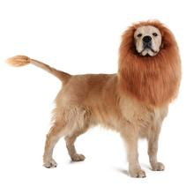 Cute Pet Cosplay Clothes Transfiguration Costume Lion Mane Winter Warm Wig Cat Large Dog Party Decoration Headgear Has Tail