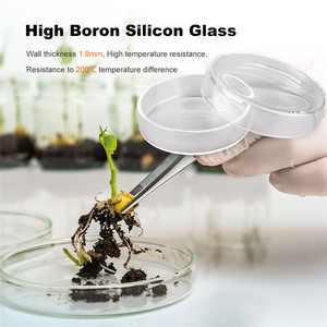 100mm Clear Petri Dishes Boros