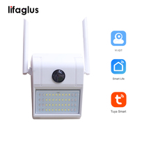 D6 Wireless Camera Wifi Smart Monitor Mobile Phone Remote High Definition Outdoor Waterproof Lighting Wall Lamp Type Monitoring