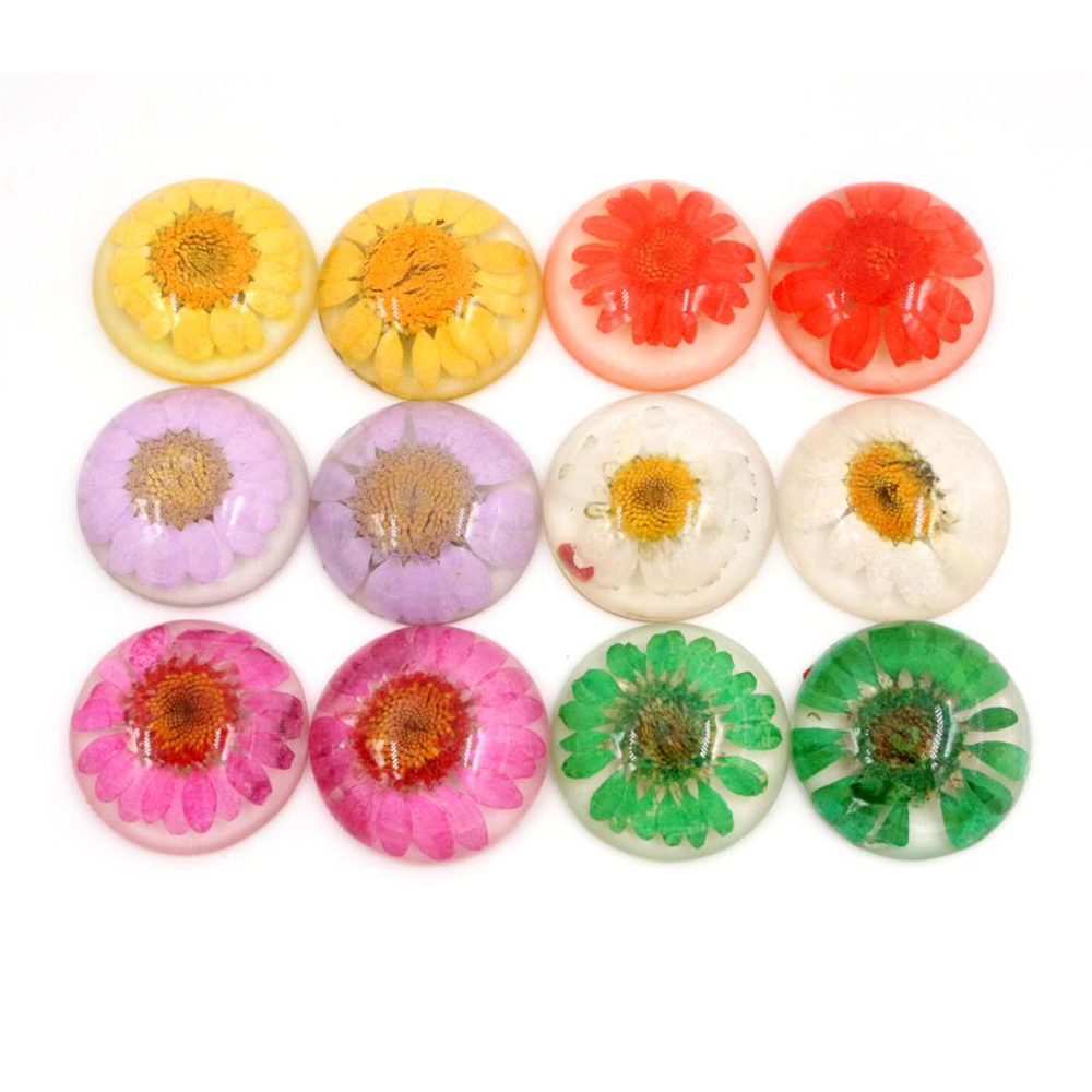 New Fashion 5pcs/lot 25mm 6 Style Colors Flower Natural Dried Flowers Flat Back Resin Cabochons Cameo Cabochons