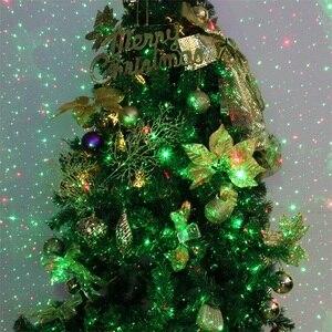 Image 2 - 야외 스카이 스타 레이저 프로젝터 무대 스포트 라이트 샤워 크리스마스 DJ 디스코 R & G 정원 풍경 장식 잔디 무대 조명