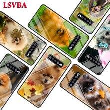 Cute Pomeranian dog for Samsung Galaxy Note 10 9 8 Pro S10e S10 5G S9 S8 S7 Plus Super Bright Glossy Phone Case Cover