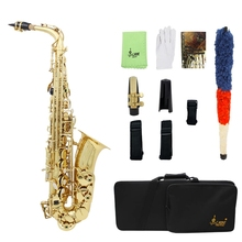 Slade Saxophone Alto Instrument E Fall Sax Lacquer Beginner with Cleaning Accessories