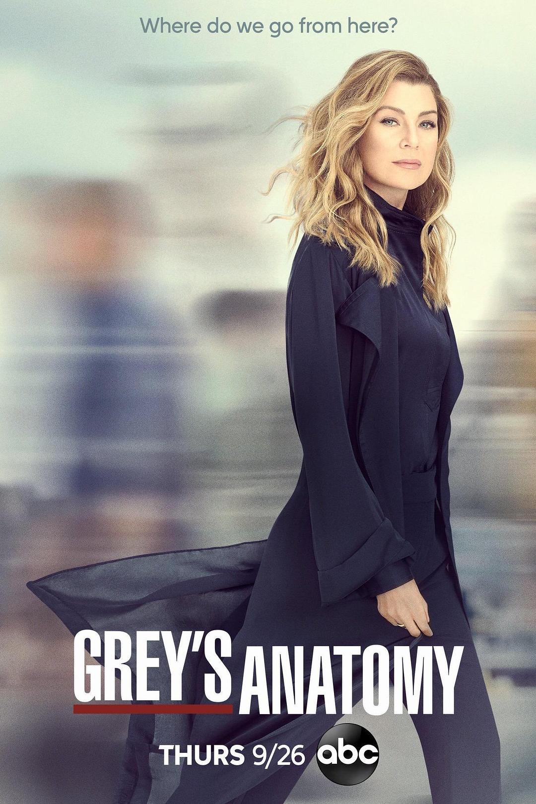 实习医生格蕾 第十六季 Grey's Anatomy Season 16