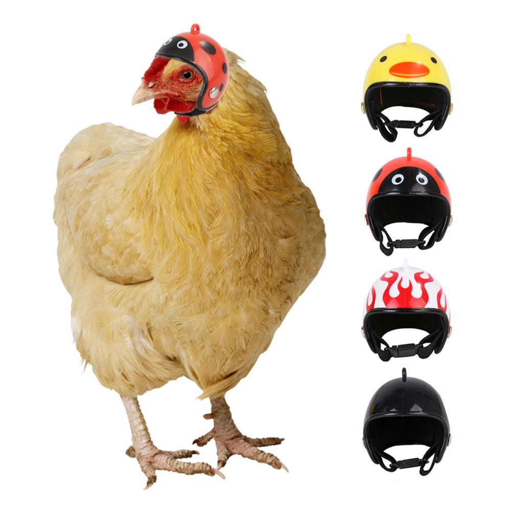 Chicken Helmet Small Pet Hard Hat Bird Duck Quail Hat Headgear Pet Chicken Helmet Bird Head Helmet Pet Supplies 1 Pcs