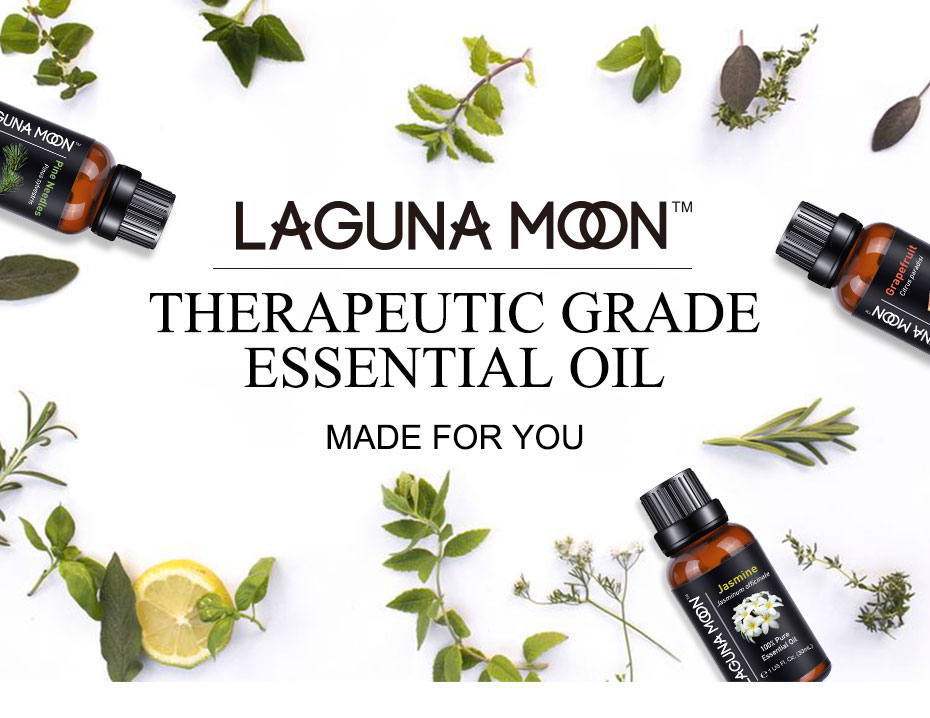 Lagunamoon 30ML 1OZ Pure Essential Oils Tea Tree Massage Humidifier Cinnamon Ylang ylang Thyme Ginger Peppermint Oil Essential