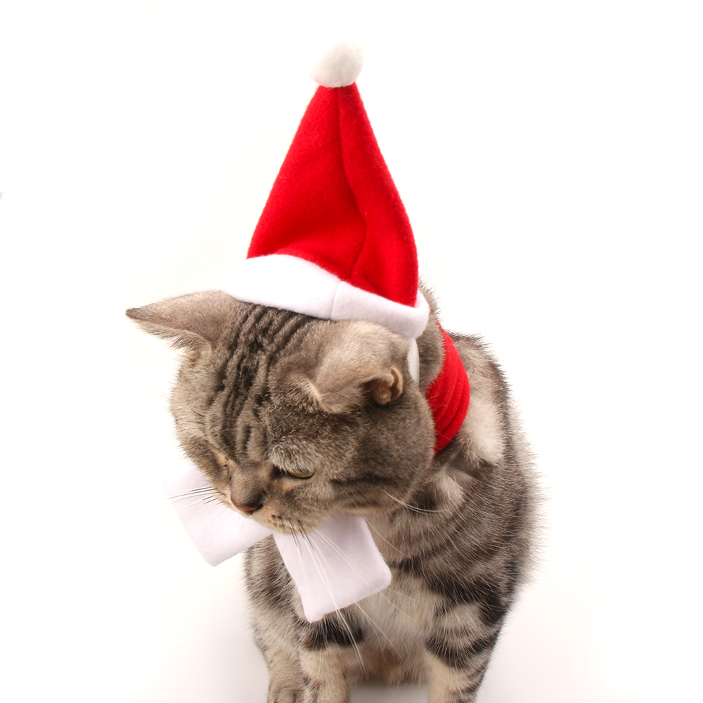 Winter Autumn Christmas Small Dogs Hat Scarf cat Costume Accessories For font b Pets b font