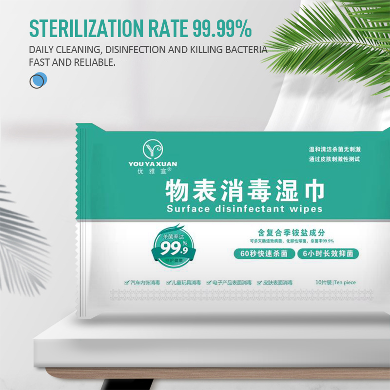 10pcs/set Disinfection Wet Wipes Antiseptic Pads Quaternary Ammonium Salt Wet Wipes Skin Cleaning Care Sterilization TSLM1