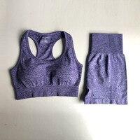 309Purple Bra Shorts