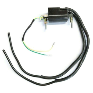 12V Ignition Coil Professional