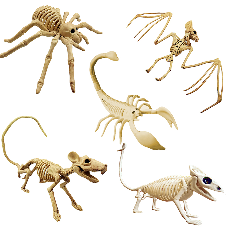 New Bat/Spider Skeleton Skull Animal Skeleton Model Bat Bones Creepy Halloween Party Decoration Fun Bone Skeleton Hot Sale