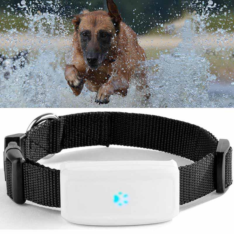 GPS-трекер для домашних животных TKSTAR, мини-устройство для отслеживания собак и кошек в режиме реального времени, Wi-Fi, GPS, LBS