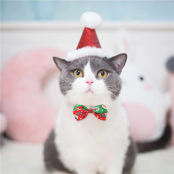 1Pc 2020 Christmas Party Pet Dog Cat Cute Bow Tie Adjustable Neck Strap Dog Care Accessories Cat Pet Supplies Christmas Ornament image