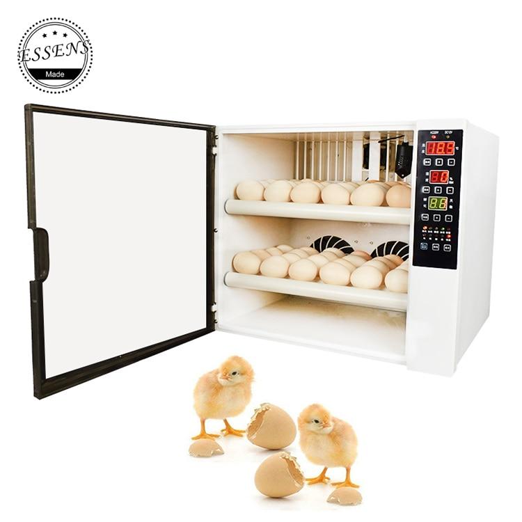 2019 Incubator 60 Chicken Eggs Mini Egg Incubator Fully Automatic 220V &12V Dual Voltage