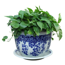 Jingdezhen Ceramic Blue And White Porcelain Flower Pot Household With Tray Bonsai Basin Green Plants Chinese Style Large Garden