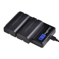 2PC 2600mAH NP F550 NP F570 F550 NP Bateria Da Câmera + Carregador USB LCD para Sony NP F330 NP F530 NP F570 NP F730 NP F750 CCD RV100|Baterias digitais| |  -