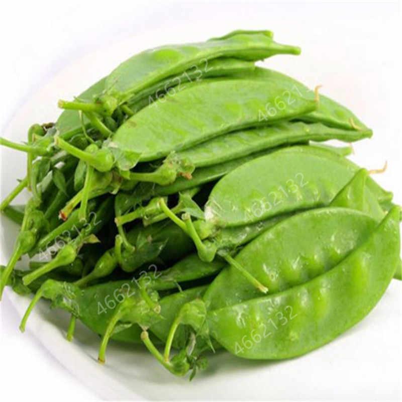 عرض ترويجي كبير 2019! 20 قطعة حبوب هولندية نبات خضراوات البازلاء الخضراء الخضروات الصحية بوعاء حديقة المنزل زراعة