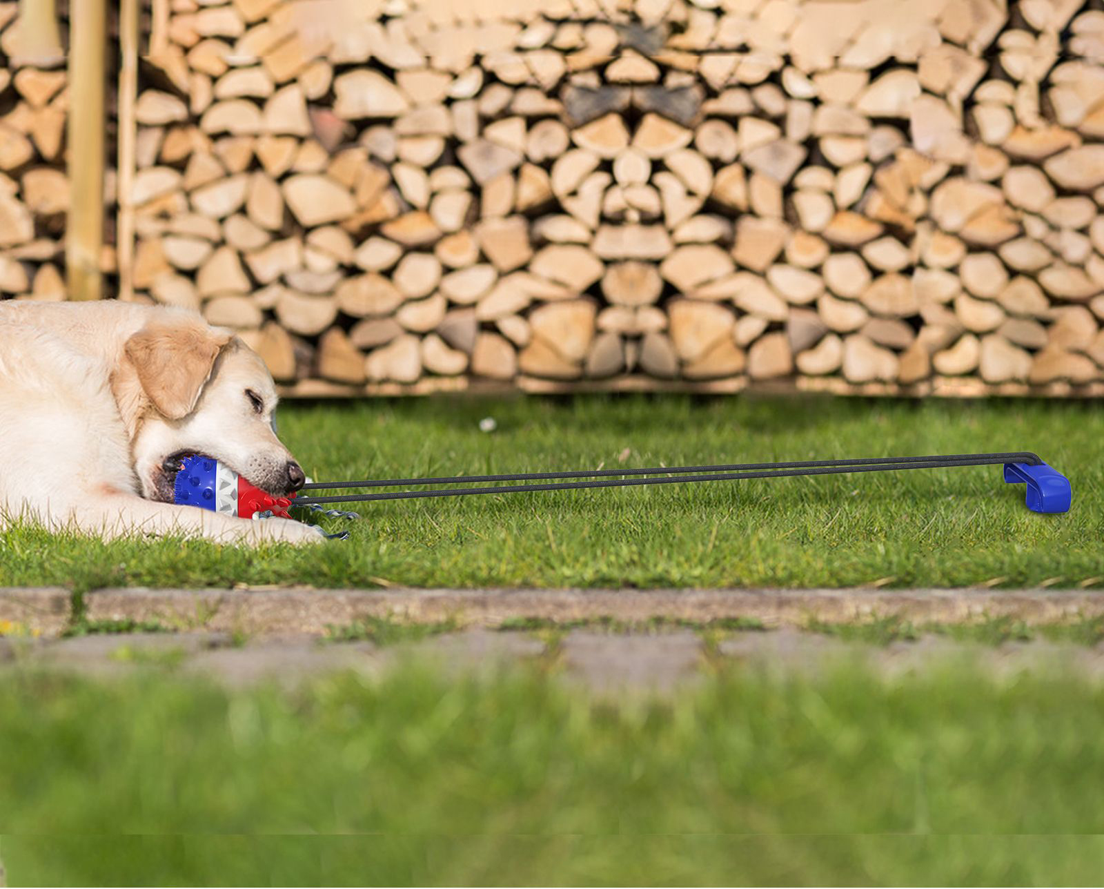 rope ball dog toy