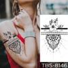 04-TBS8146