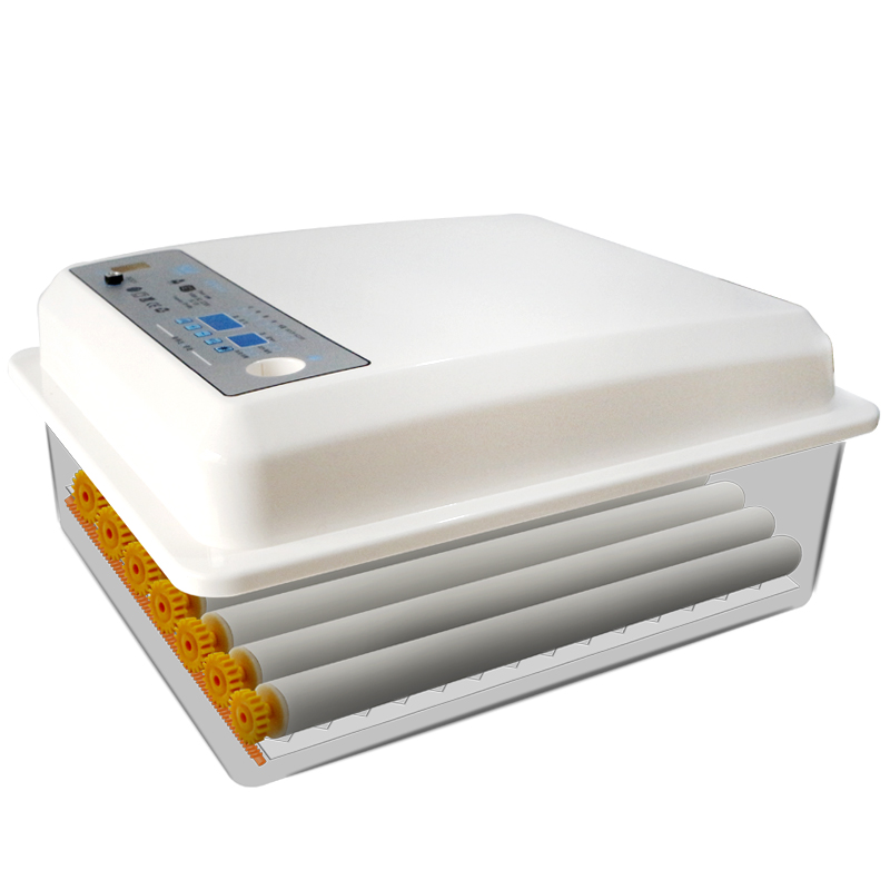 Full-automatic Small Household Water Bed Incubator Peacock Duck Goose  Egg   Quail  Chicken