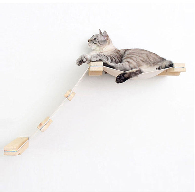猫电梯_05