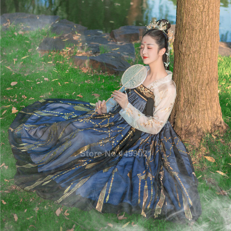 Women Chinese Style Traditional Folk Dance Costume Oriental Han Dynasty Fairy Performance Hanfu Crane Singer Printed Skirt Set