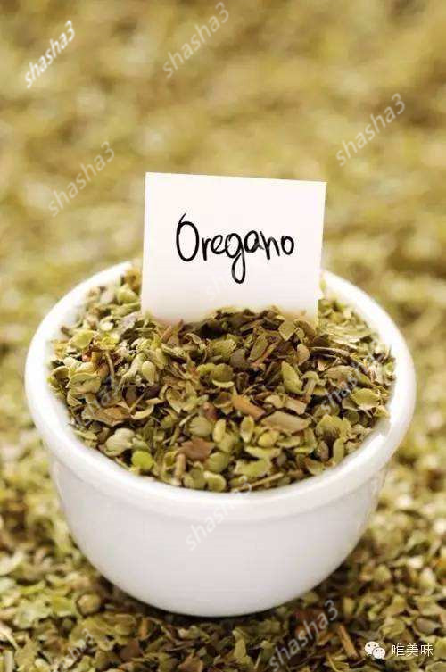 Oregano Herb Plants Spice Seasoning Kitchen Vegetable Rich Flavor Diy Plant For Home Garden Pot
