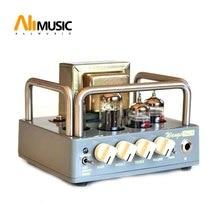 Electric All Tube Guitar Amplifier Head Biyang Wangs MINI 5 AMP Head Adjust Volume And Tone