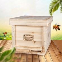 Chinese Fir Beehive Beekeeping Tool Set Pine Wooden Bee Hives In Beehive Box