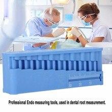 1PC plastique dentaire Mini Endo mesure Autoclavable bloc endodontique fichiers dentiste Instrument règle bleu 87x32x20MM soins bucco-dentaires